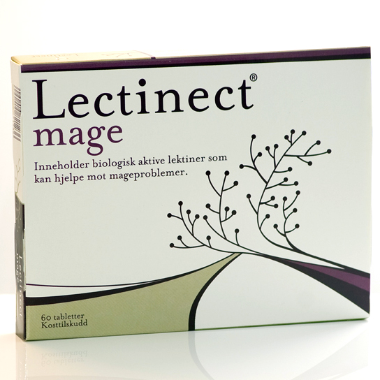 MageLectinect1