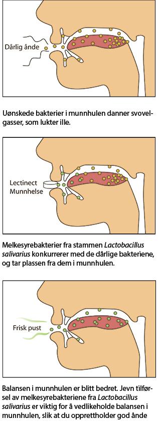munnehelse_ill_12